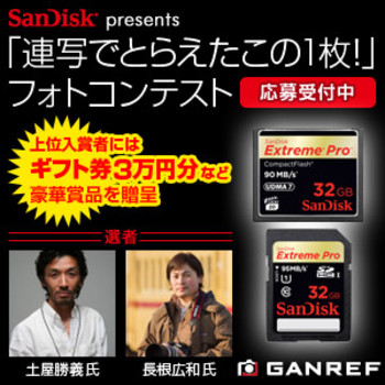 Sandisk_130315_rect_2