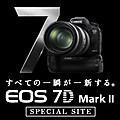 7dmk2sp_2